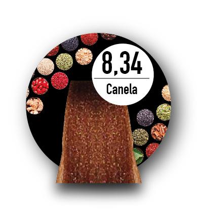 8.34 CANELA (S)