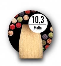 10.3 MALTA (S)